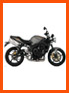 Rent a Triumph street triple